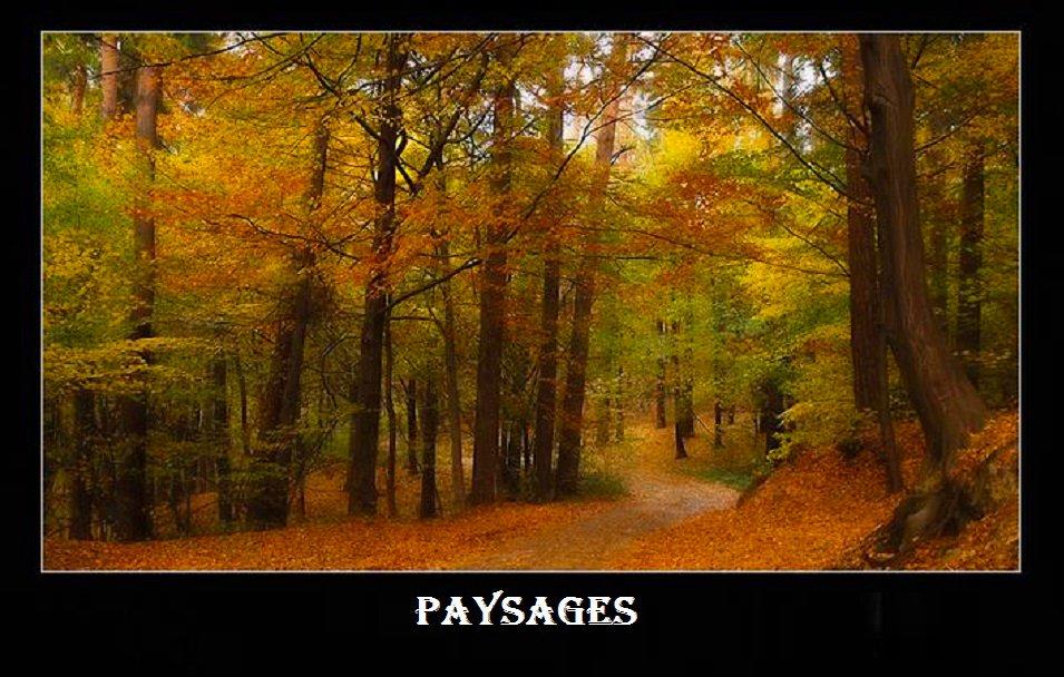 Paysages de