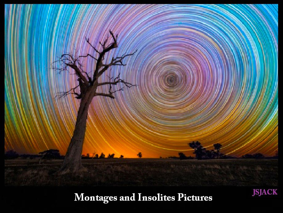 Montages and Insolites Pictures, /   dans Montages and Insolites Pictures montage-p48