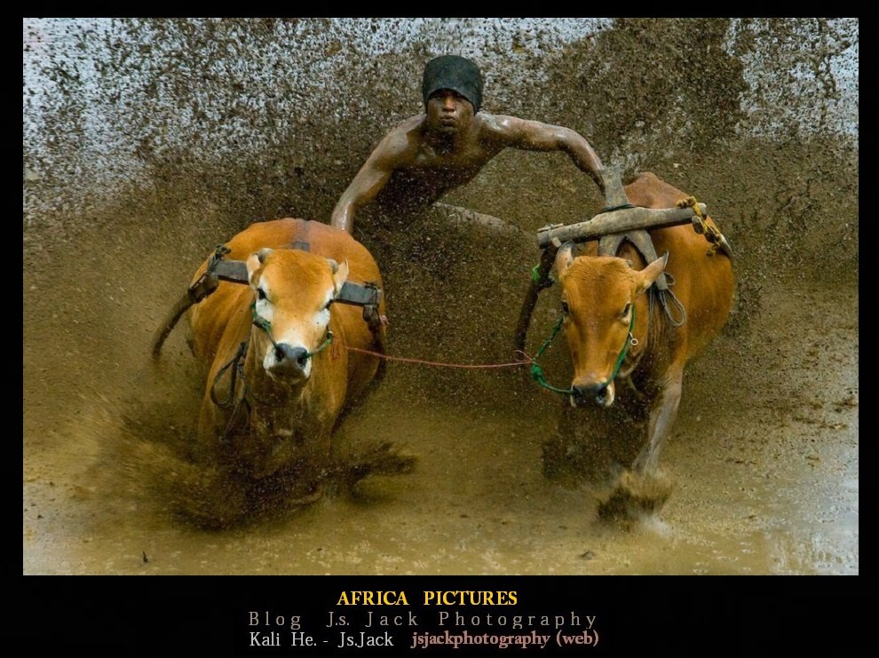 Africa Pictures, /   Blog.Js.Jack.Photography dans Africa Pictures africa-pictures