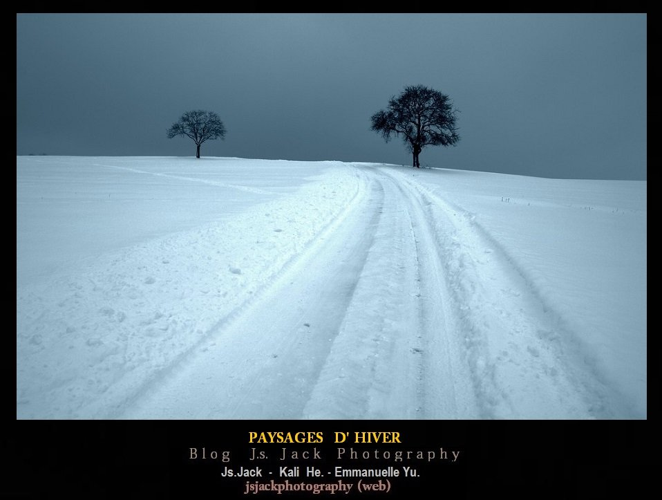 Hiver Paysages