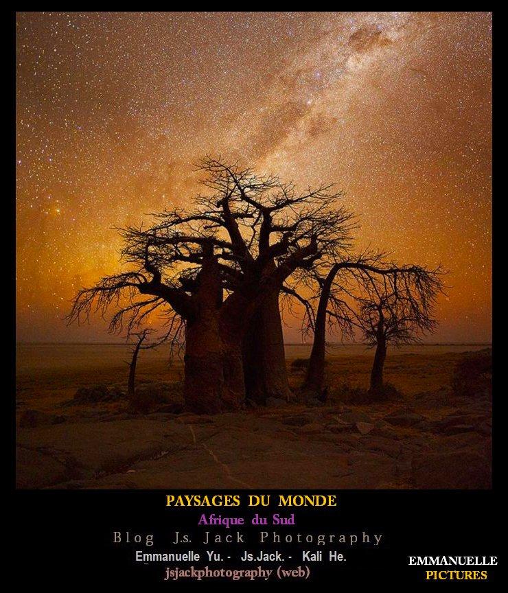 Paysage Monde EE11