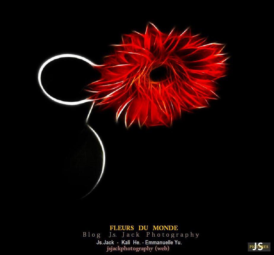 Fleurs monde 777