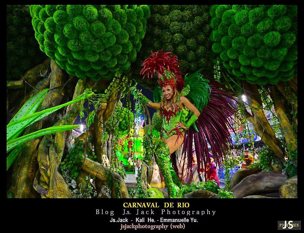 Carnaval de Rio h100