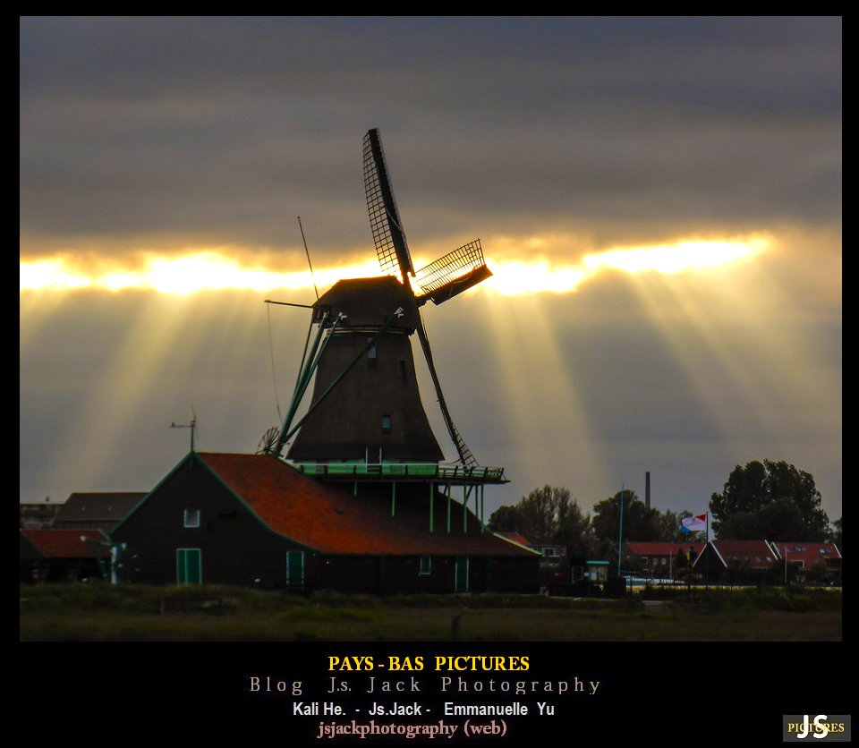 Pays Bas Pictures 22