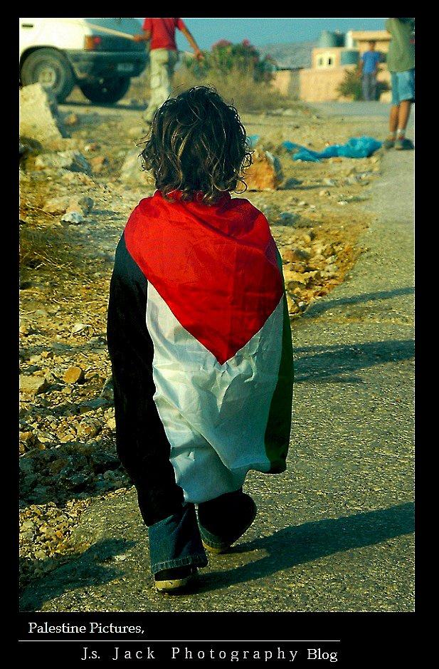 Palestine Pictures 008