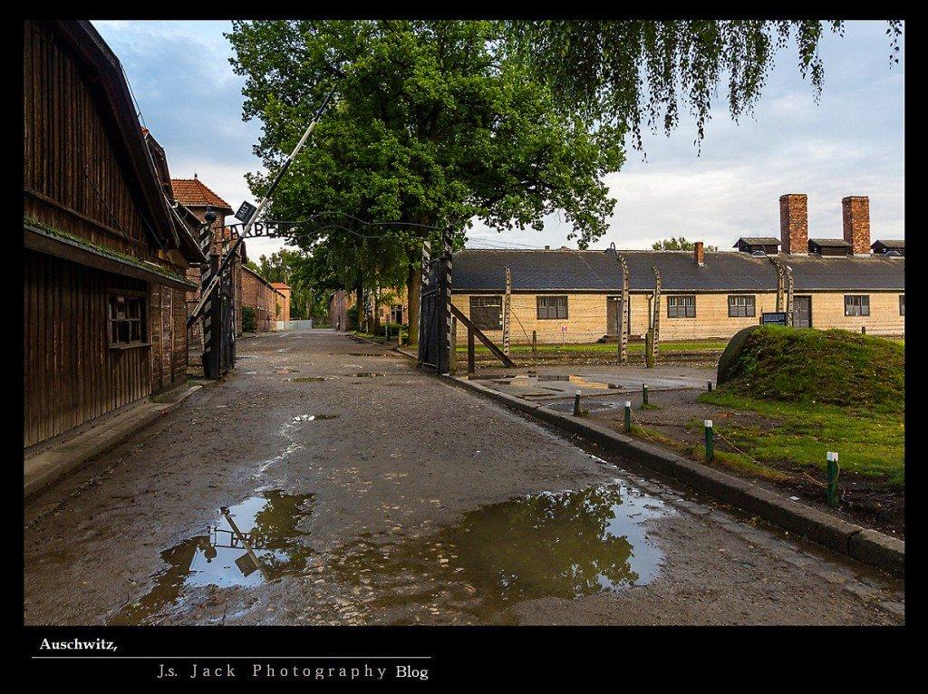 Auschwitz 24