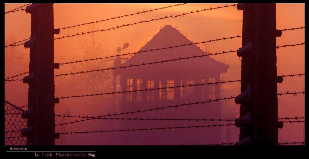 Auschwitz 203