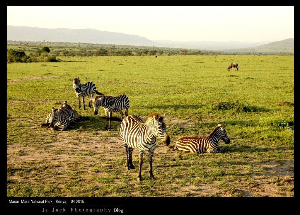 Masai Park 006