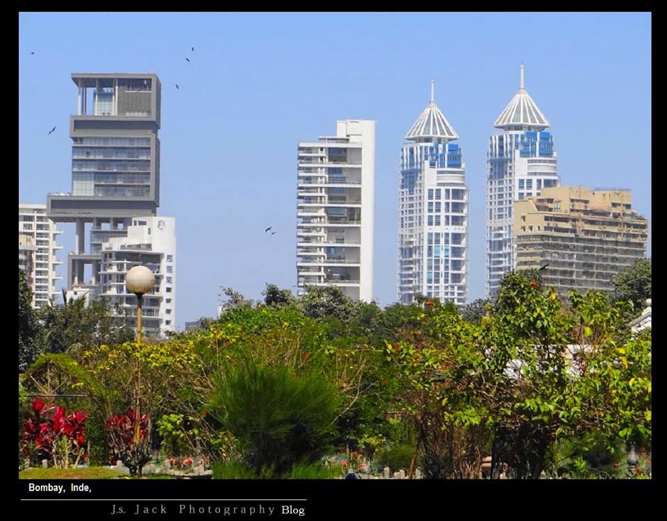 Bombay 004